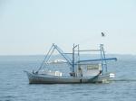 Shrimp boat in Mobile Bay